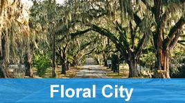 Floral City Roadway.